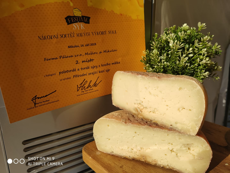 kozí sýr soutěž